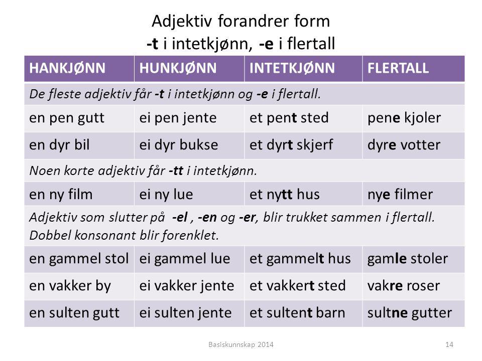 Adjektiv forandrer form -t i intetkjønn, -e i flertall
