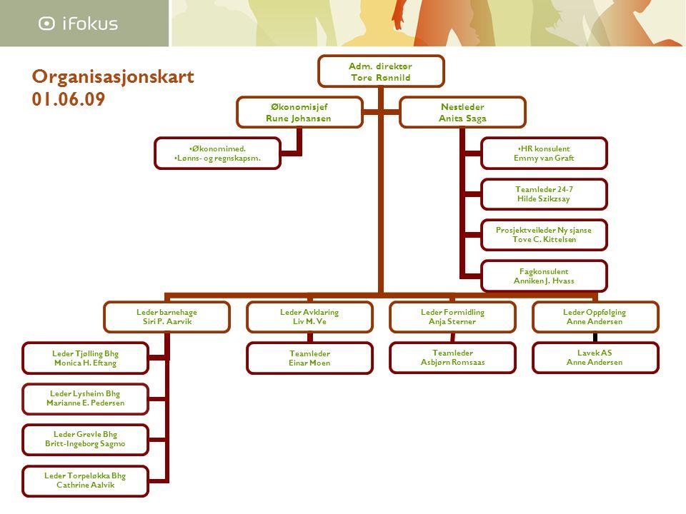 Organisasjonskart 01.06.09