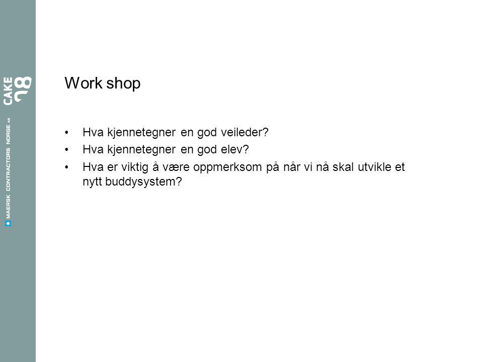 Work shop Hva kjennetegner en god veileder