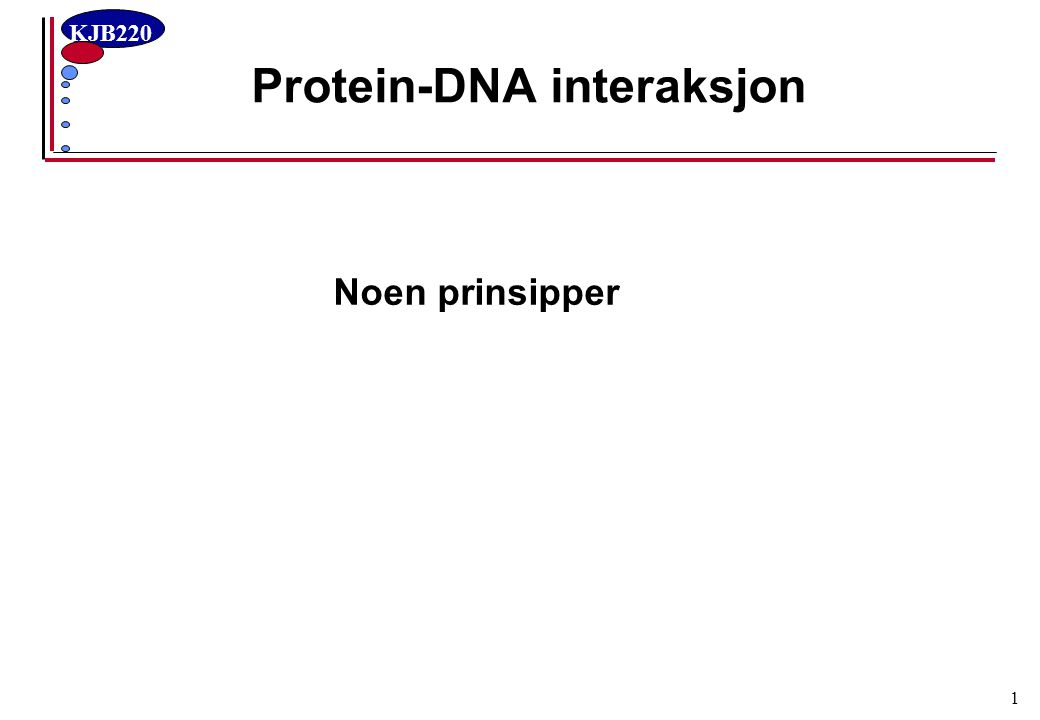 Protein-DNA interaksjon