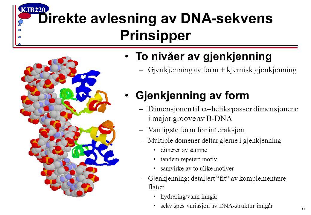 Direkte avlesning av DNA-sekvens Prinsipper