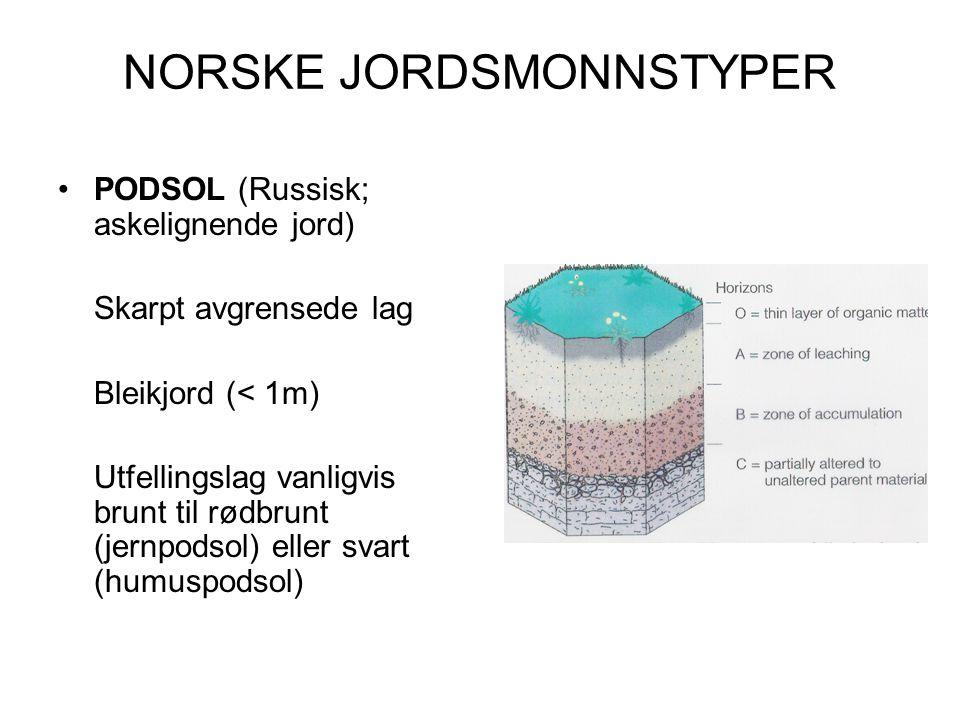 NORSKE JORDSMONNSTYPER