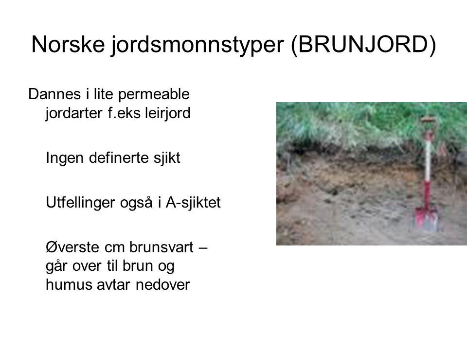 Norske jordsmonnstyper (BRUNJORD)