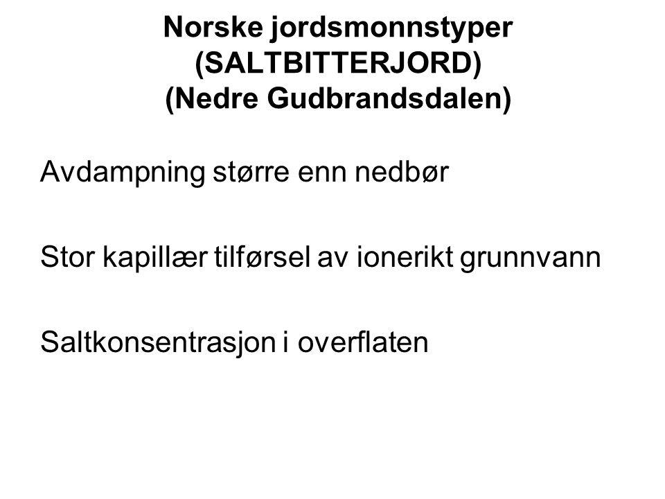 Norske jordsmonnstyper (SALTBITTERJORD) (Nedre Gudbrandsdalen)