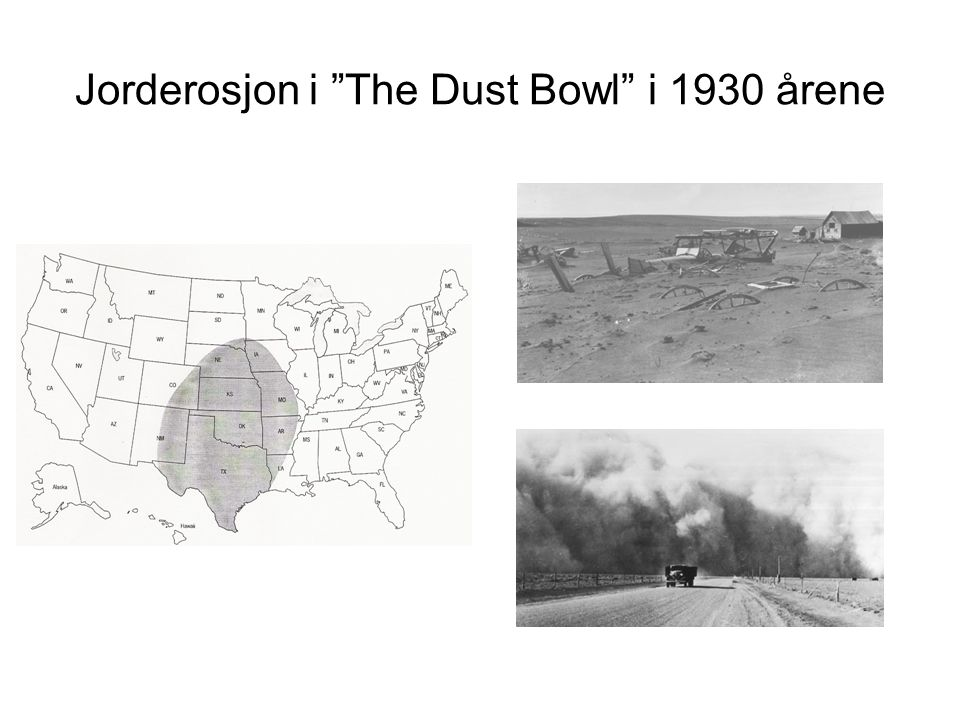 Jorderosjon i The Dust Bowl i 1930 årene
