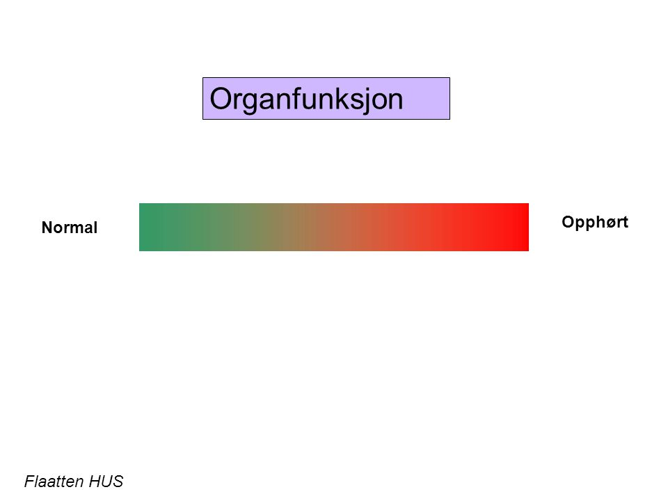 Organfunksjon Opphørt Normal Flaatten HUS