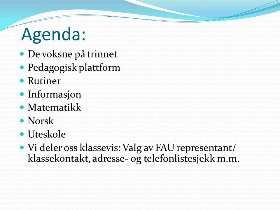 Agenda: De voksne på trinnet Pedagogisk plattform Rutiner Informasjon