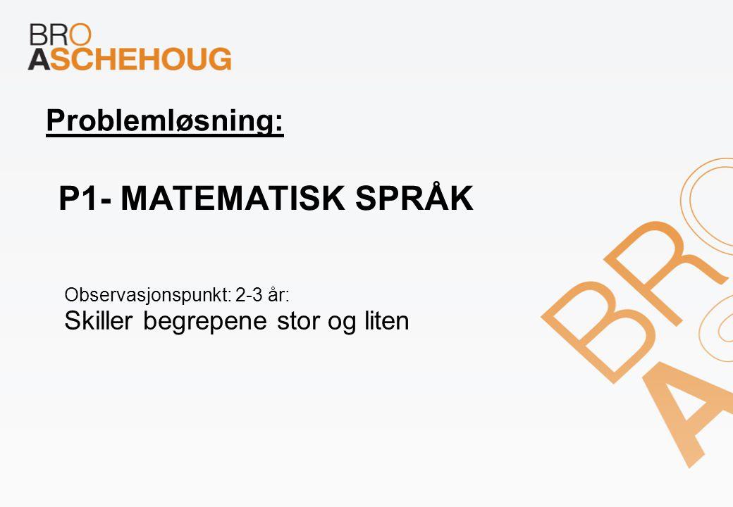 P1- Matematisk språk Problemløsning: Skiller begrepene stor og liten
