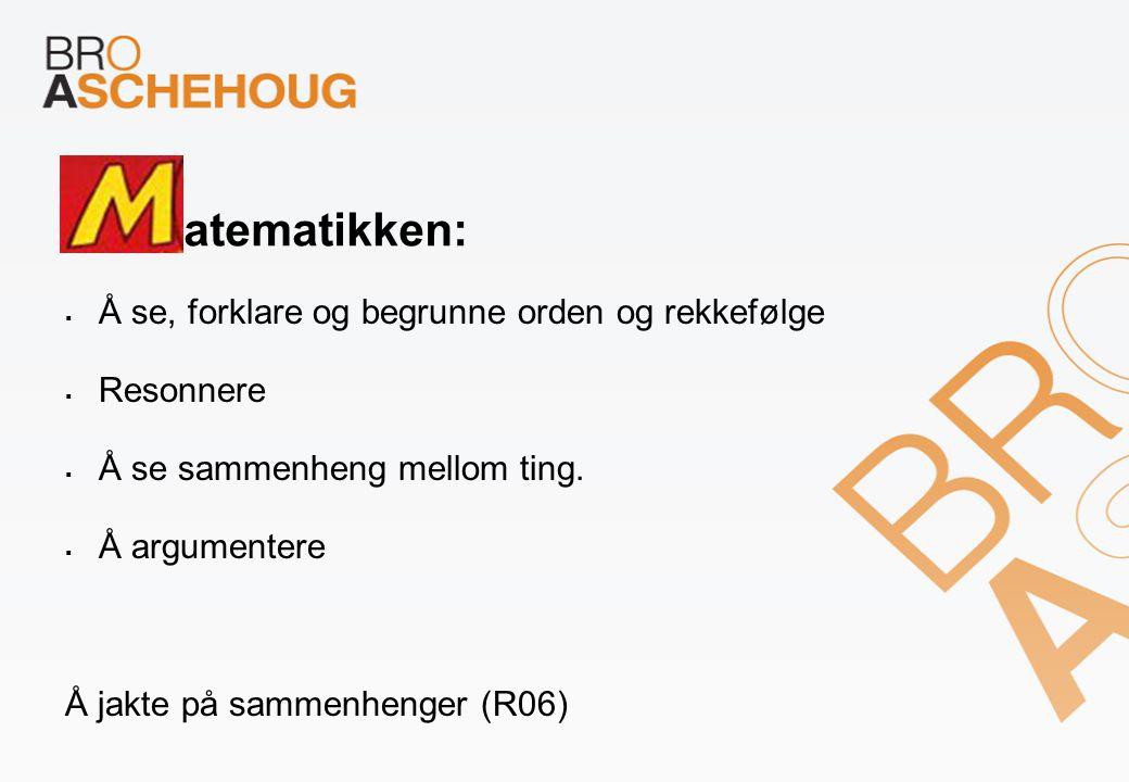 atematikken: Å se, forklare og begrunne orden og rekkefølge Resonnere