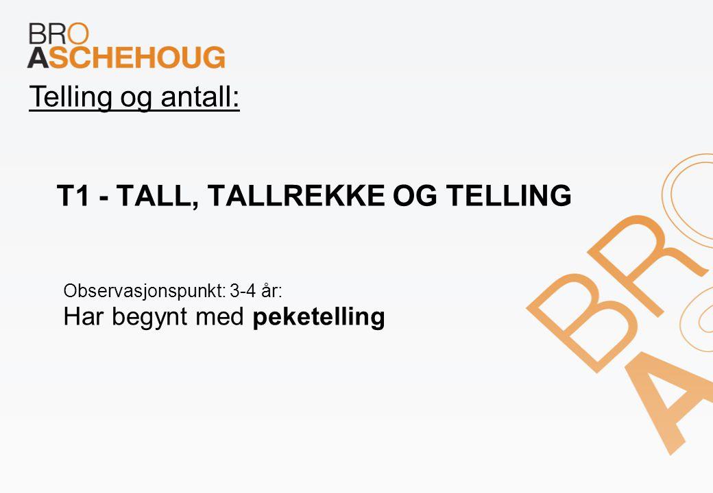 T1 - Tall, tallrekke og telling