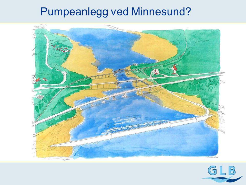 Pumpeanlegg ved Minnesund