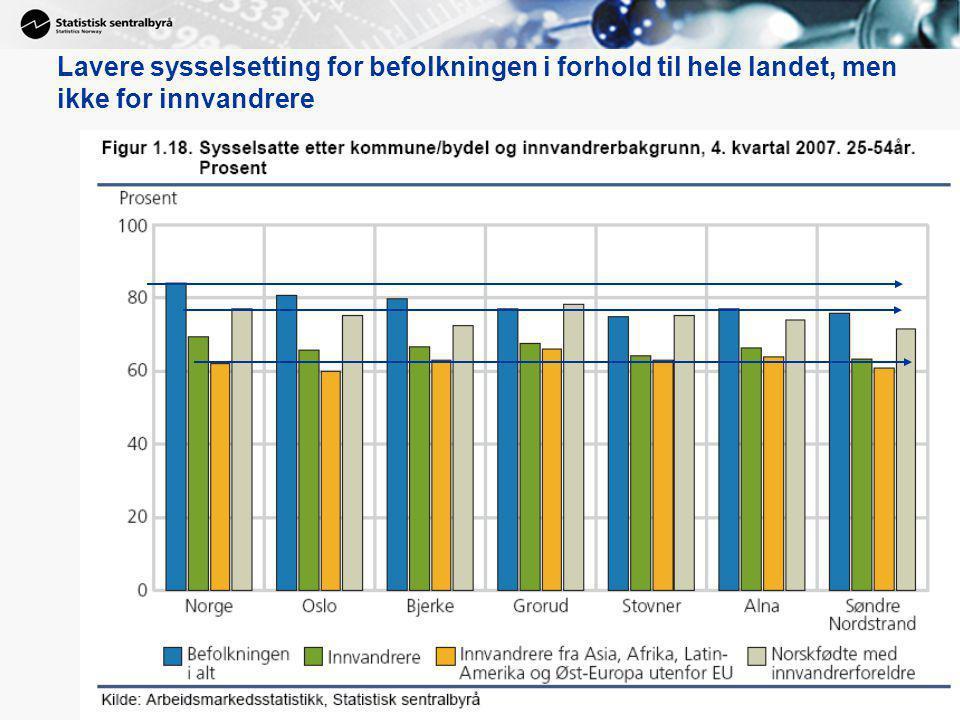 Lavere sysselsetting for befolkningen i forhold til hele landet, men ikke for innvandrere