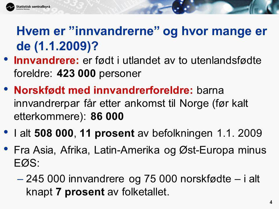 Hvem er innvandrerne og hvor mange er de (1.1.2009)