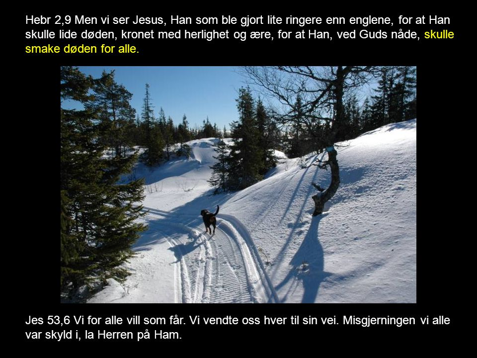 Hebr 2,9 Men vi ser Jesus, Han som ble gjort lite ringere enn englene, for at Han skulle lide døden, kronet med herlighet og ære, for at Han, ved Guds nåde, skulle smake døden for alle.