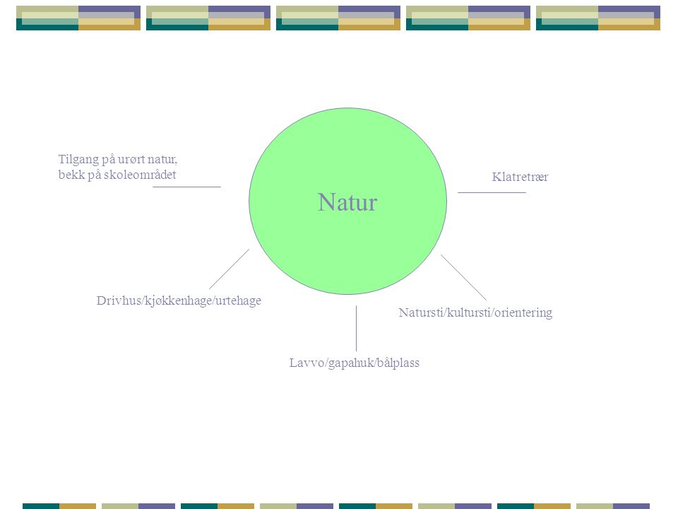 Natur Tilgang på urørt natur, bekk på skoleområdet Klatretrær
