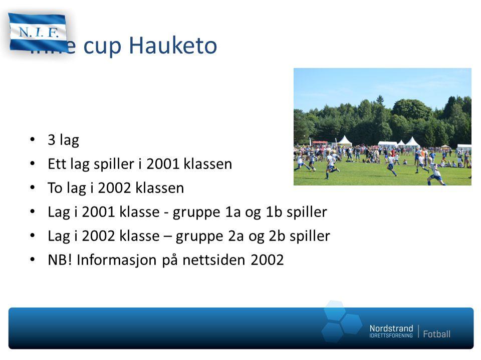 Inne cup Hauketo 3 lag Ett lag spiller i 2001 klassen