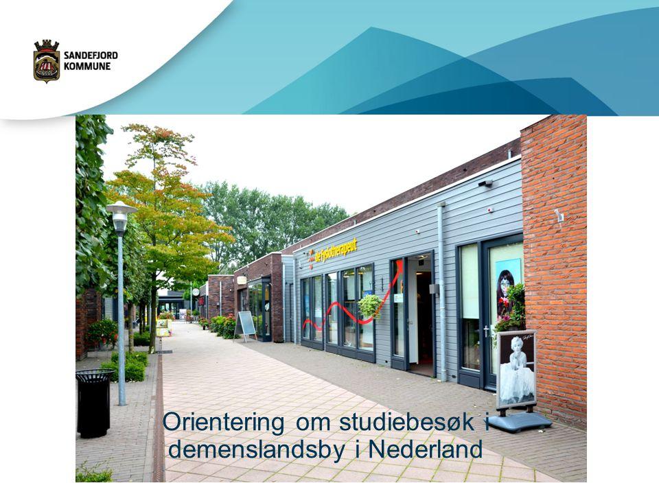 Orientering om studiebesøk i demenslandsby i Nederland