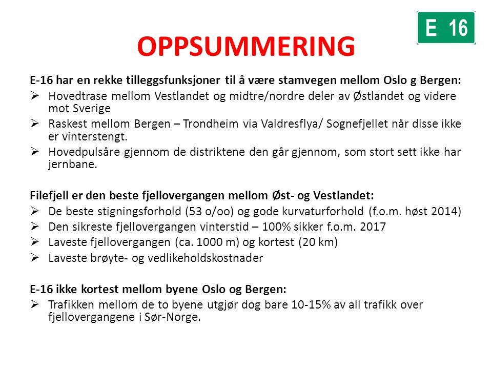 OPPSUMMERING E-16 har en rekke tilleggsfunksjoner til å være stamvegen mellom Oslo g Bergen: