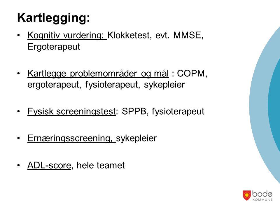 Kartlegging: Kognitiv vurdering: Klokketest, evt. MMSE, Ergoterapeut
