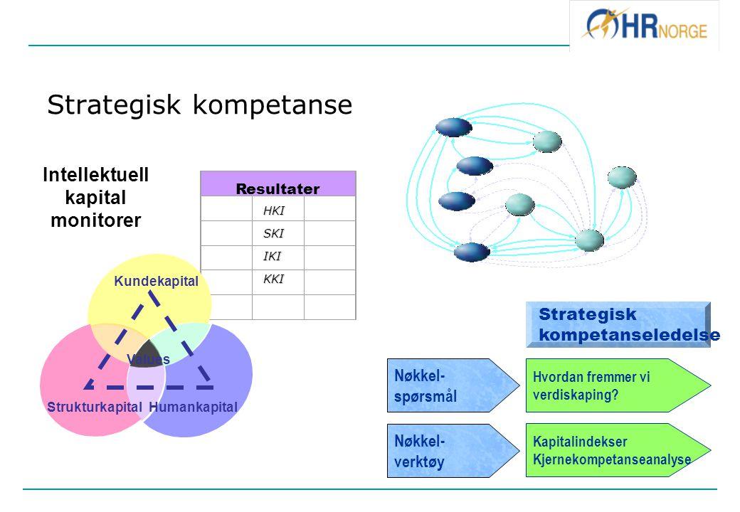 Strategisk kompetanse