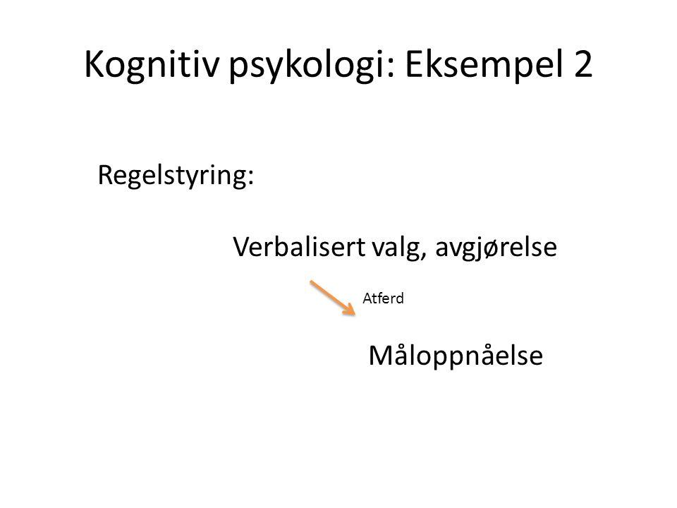 Kognitiv psykologi: Eksempel 2