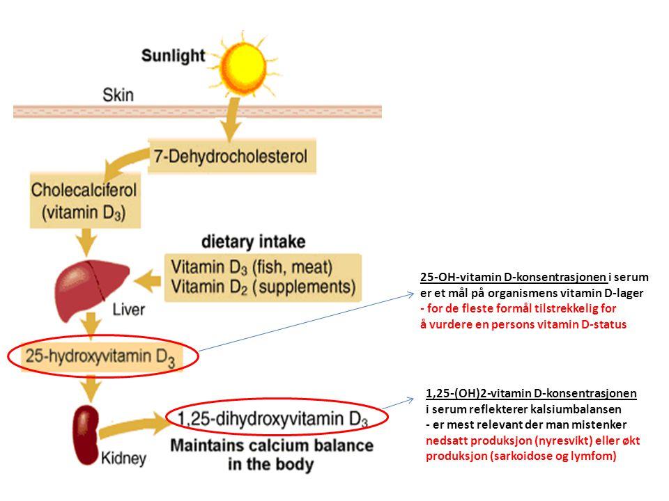 25-OH-vitamin D-konsentrasjonen i serum er et mål på organismens vitamin D-lager