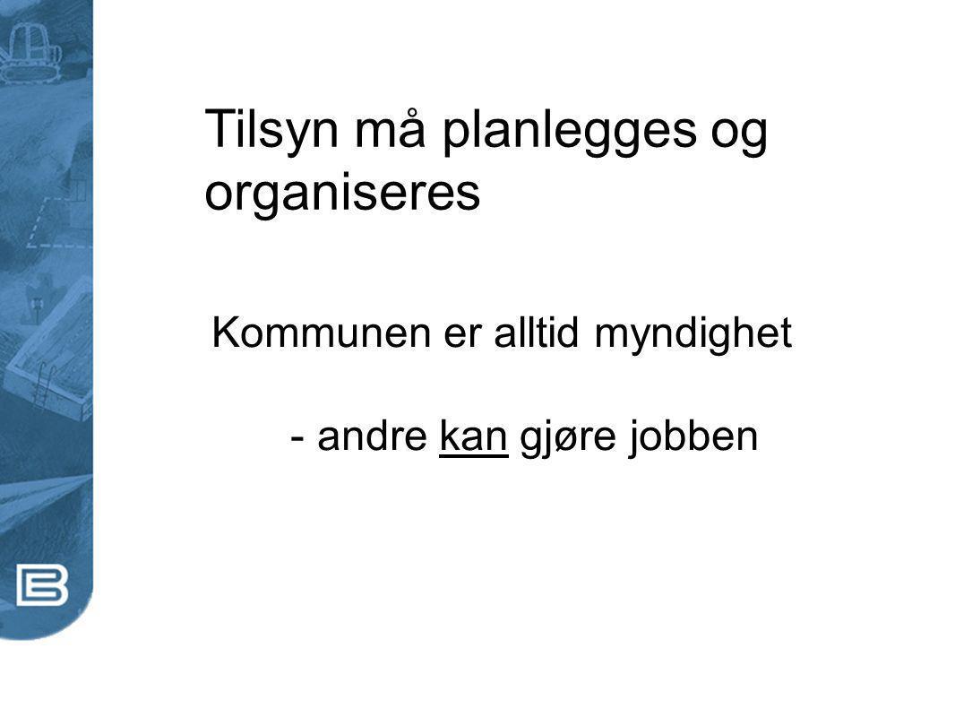 Tilsyn må planlegges og organiseres