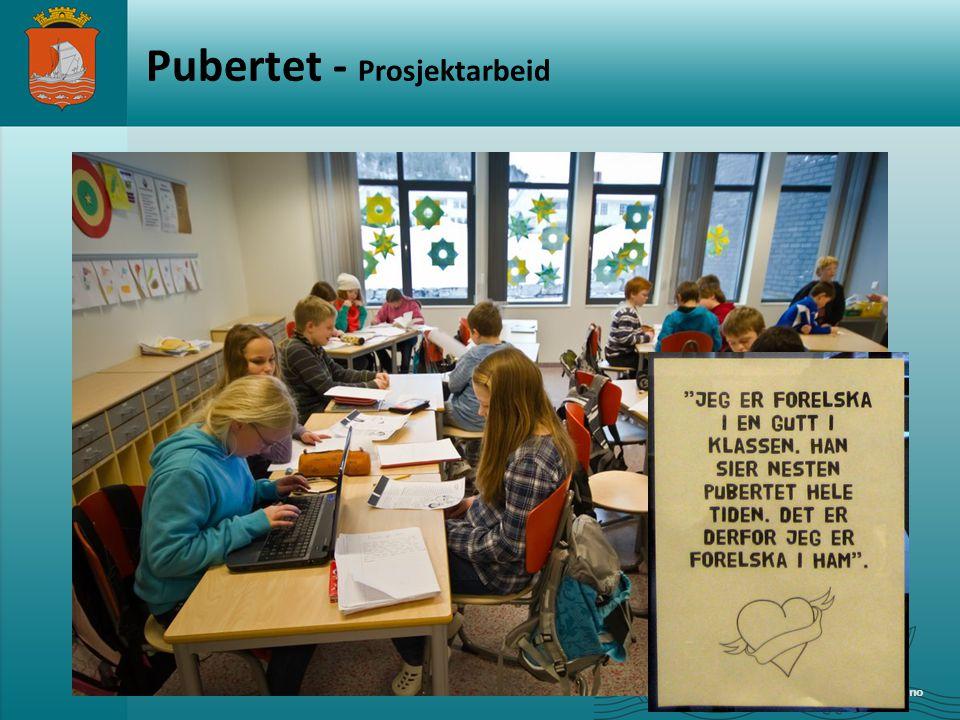 Pubertet - Prosjektarbeid