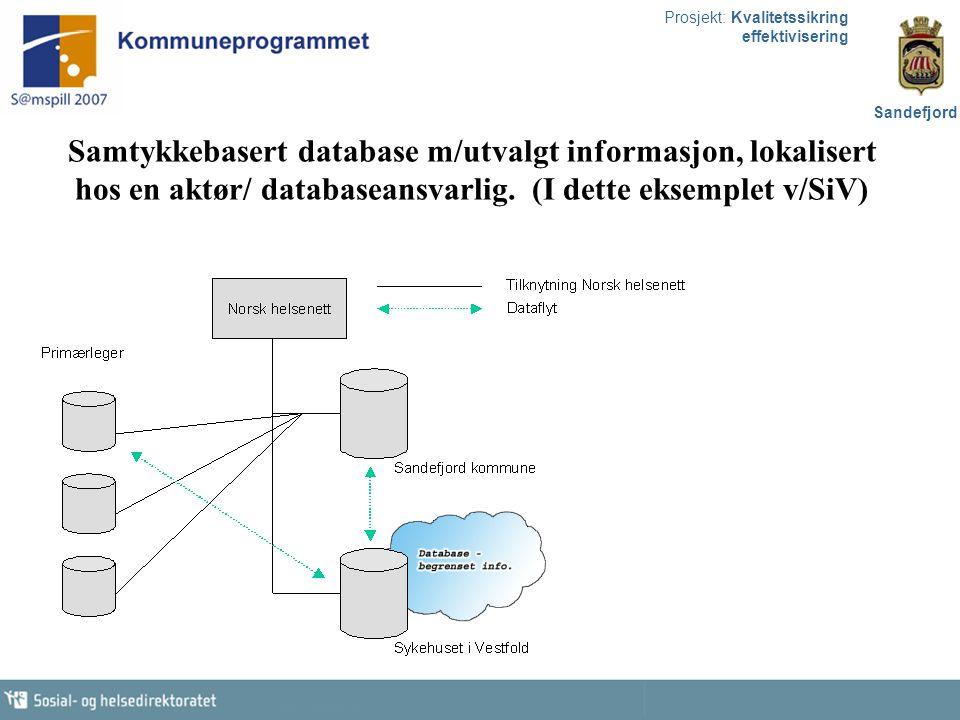Samtykkebasert database m/utvalgt informasjon, lokalisert hos en aktør/ databaseansvarlig.