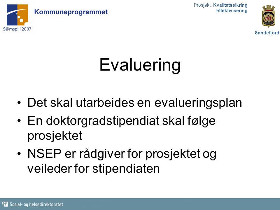 Evaluering Det skal utarbeides en evalueringsplan