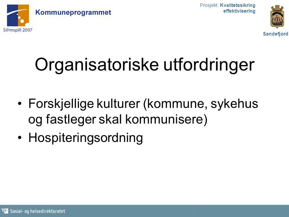 Organisatoriske utfordringer