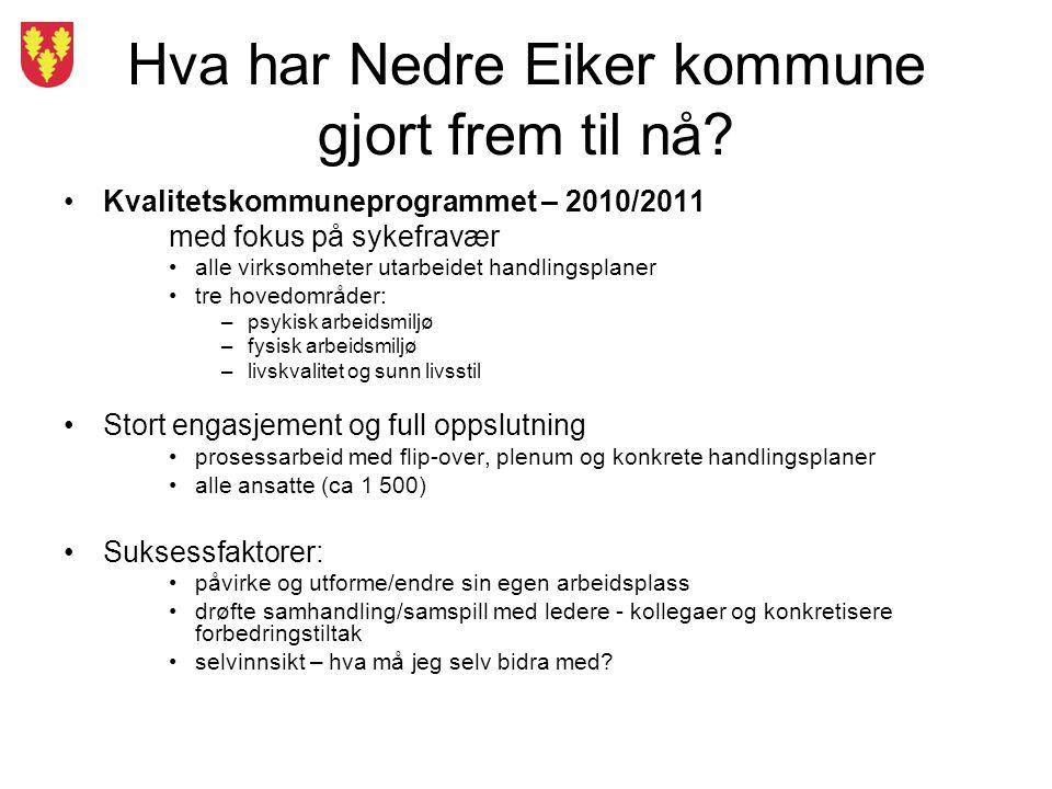 Hva har Nedre Eiker kommune gjort frem til nå