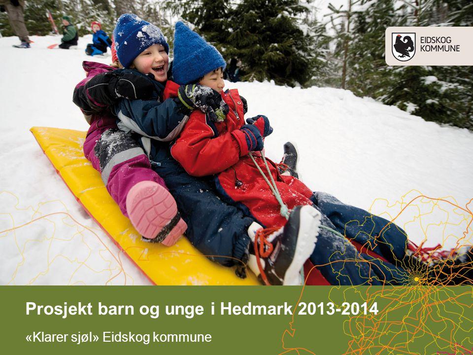 Prosjekt barn og unge i Hedmark 2013-2014