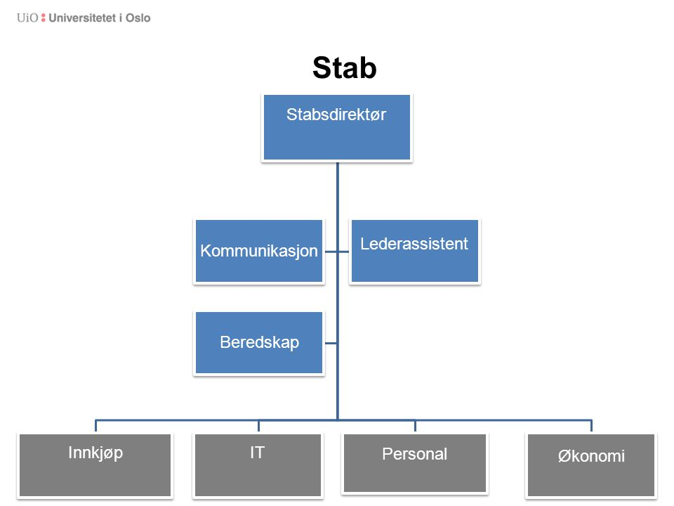 Stab Stabsdirektør Innkjøp IT Personal Økonomi Kommunikasjon