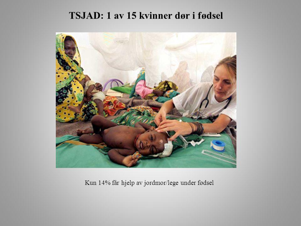 TSJAD: 1 av 15 kvinner dør i fødsel