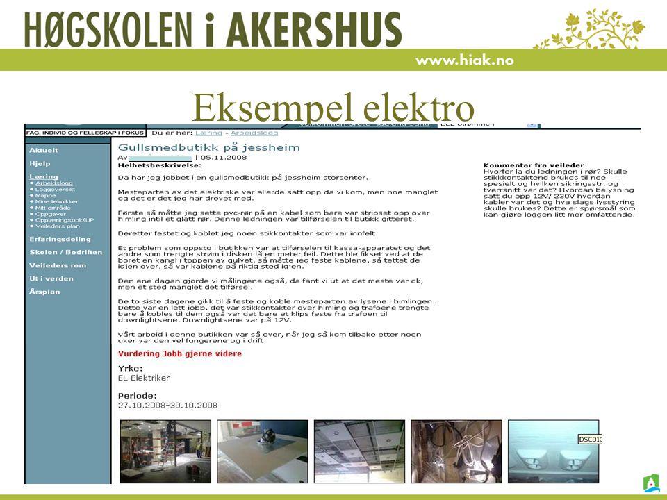 Eksempel elektro H. Nore, G.H.Sund, I. Vagle 15.01.09
