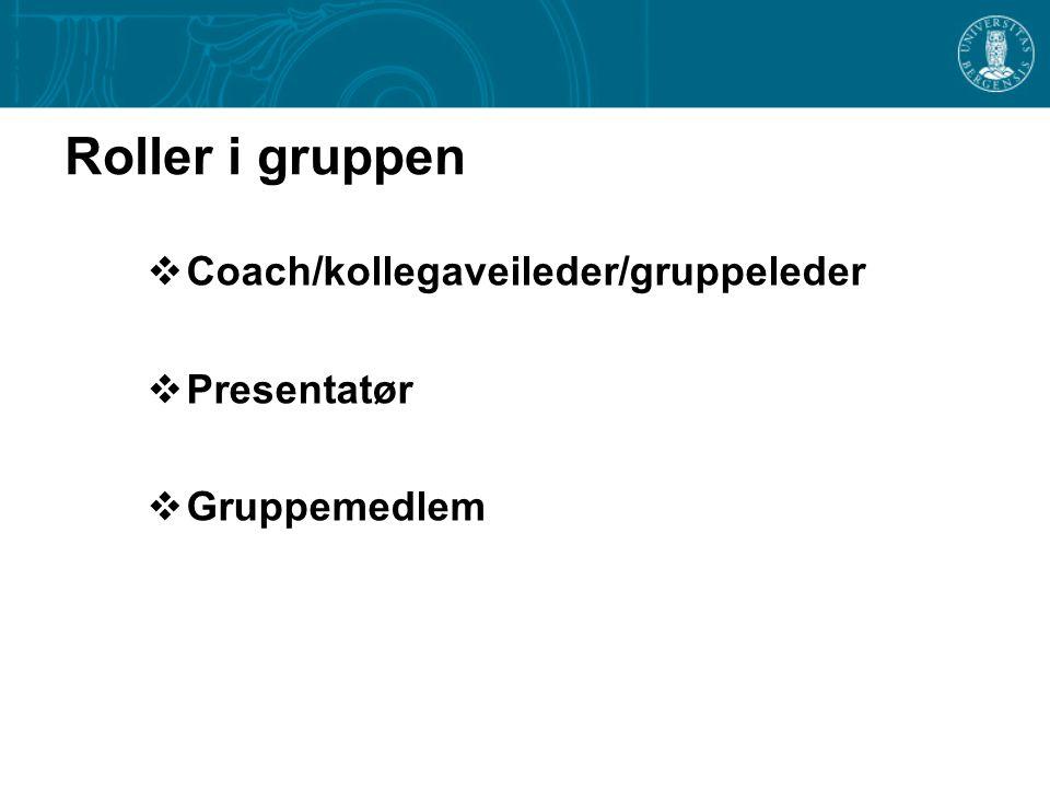 Roller i gruppen Coach/kollegaveileder/gruppeleder Presentatør
