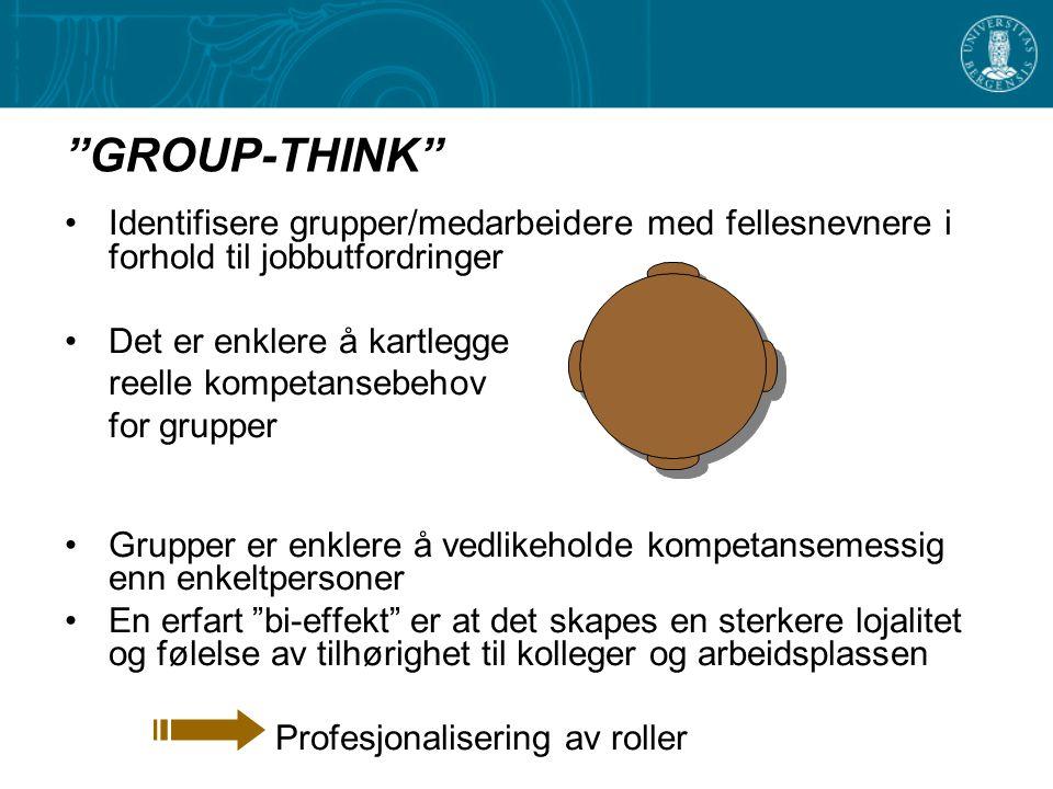 GROUP-THINK Identifisere grupper/medarbeidere med fellesnevnere i forhold til jobbutfordringer. Det er enklere å kartlegge.