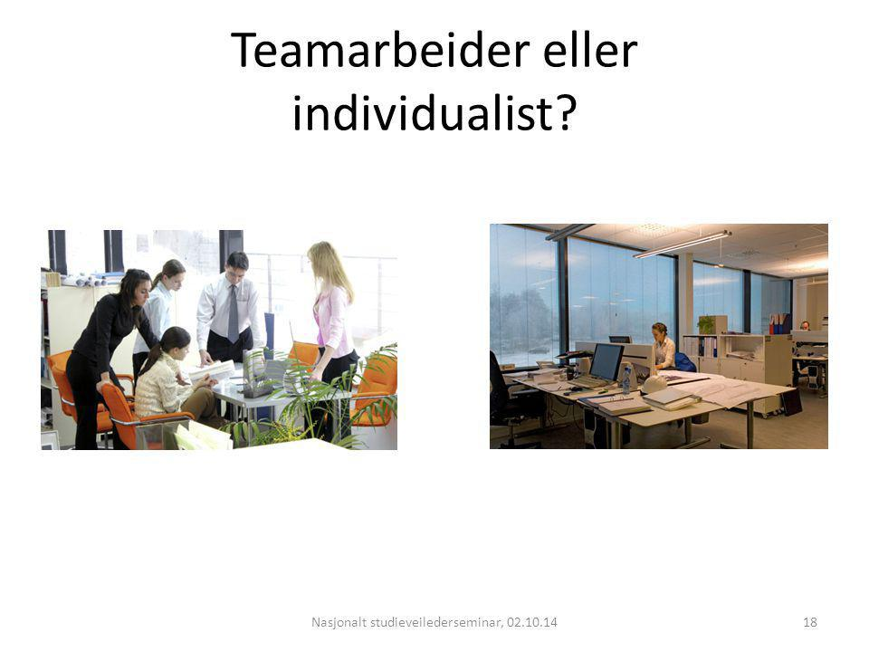 Teamarbeider eller individualist