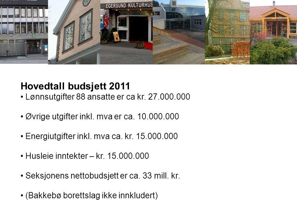 Hovedtall budsjett 2011 Lønnsutgifter 88 ansatte er ca kr. 27.000.000