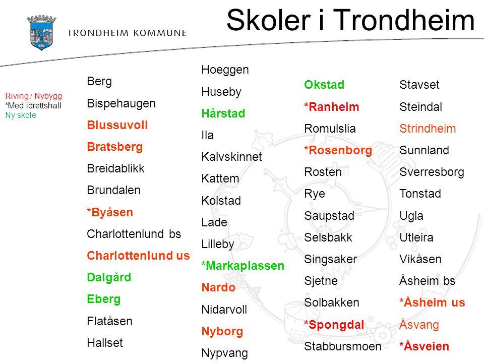 Skoler i Trondheim Hoeggen Huseby Hårstad Ila Kalvskinnet Kattem