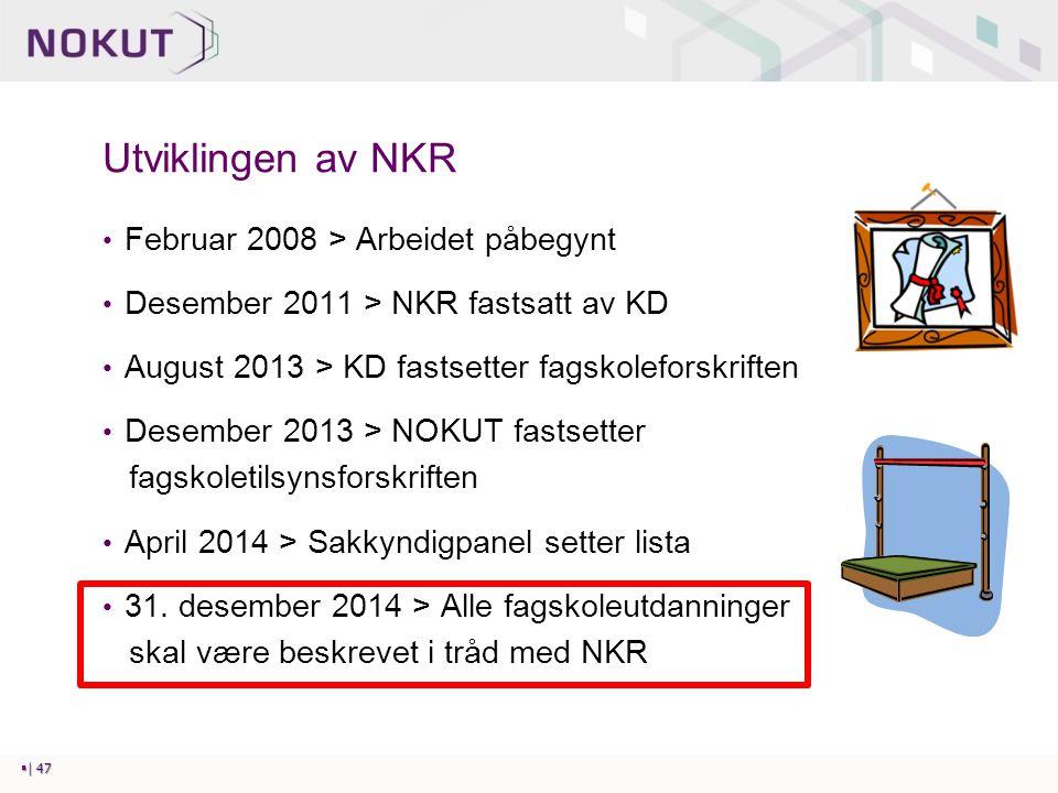 Utviklingen av NKR Februar 2008 > Arbeidet påbegynt