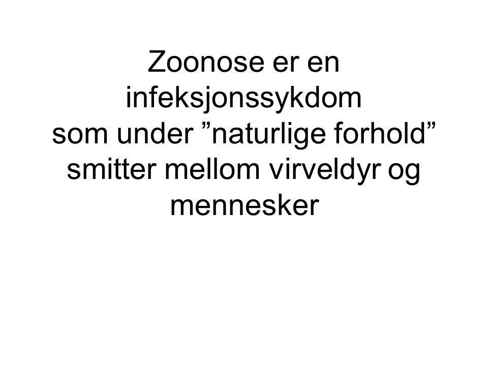 Zoonose er en infeksjonssykdom som under naturlige forhold smitter mellom virveldyr og mennesker