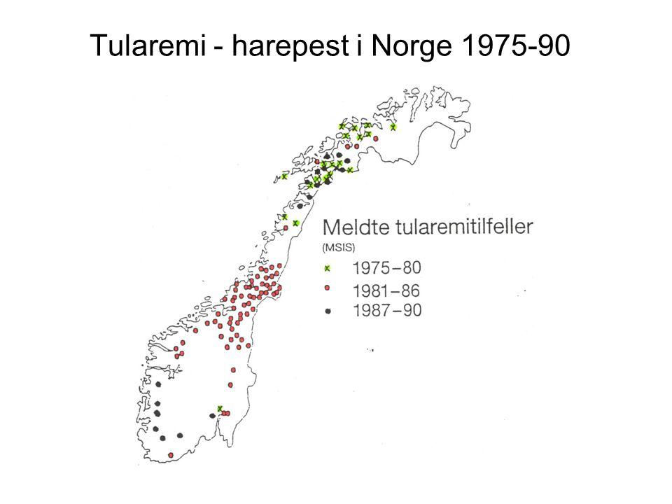 Tularemi - harepest i Norge 1975-90