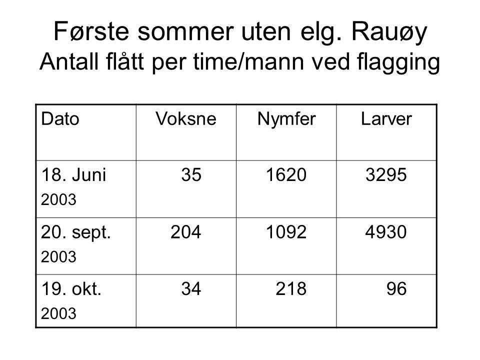 Første sommer uten elg. Rauøy Antall flått per time/mann ved flagging