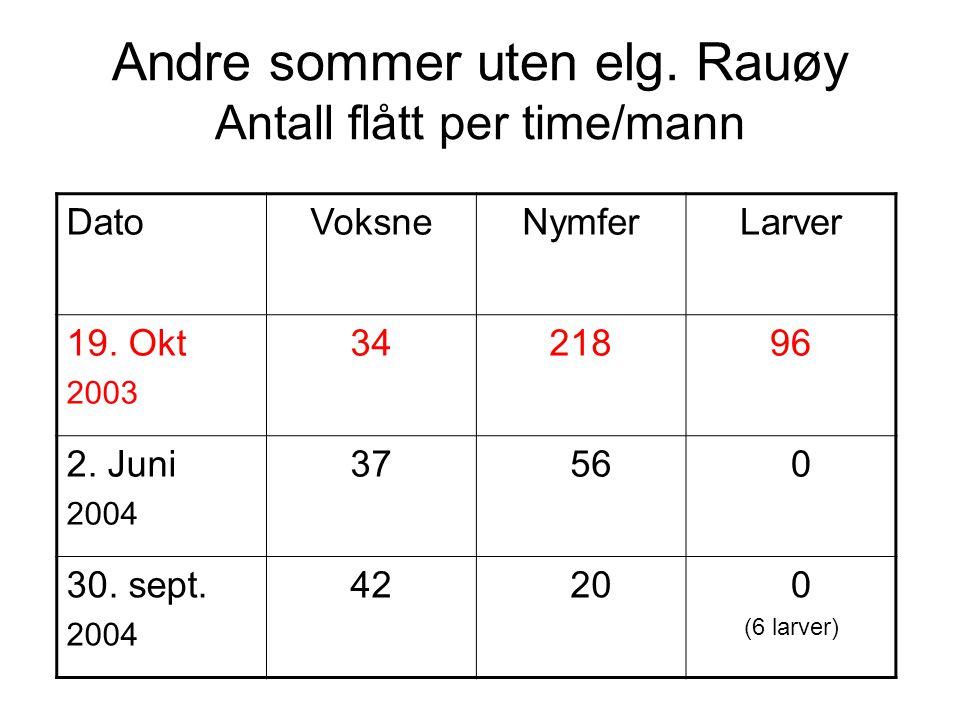 Andre sommer uten elg. Rauøy Antall flått per time/mann