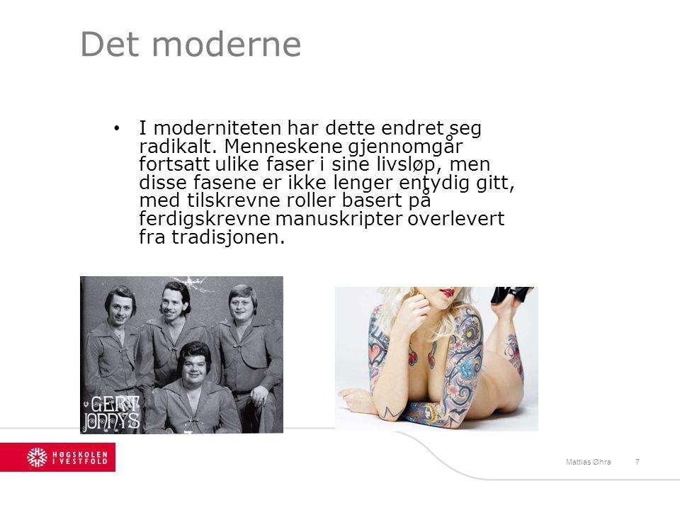 Det moderne samfunn (Den faste moderniteten. Z. Bauman)