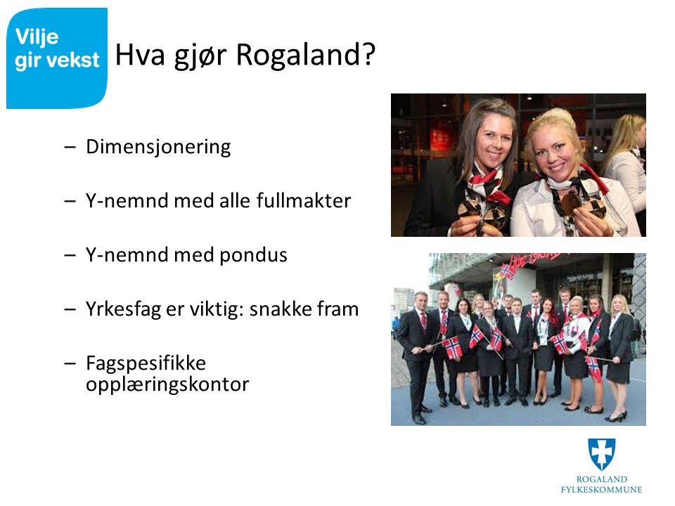 Hva gjør Rogaland Dimensjonering Y-nemnd med alle fullmakter