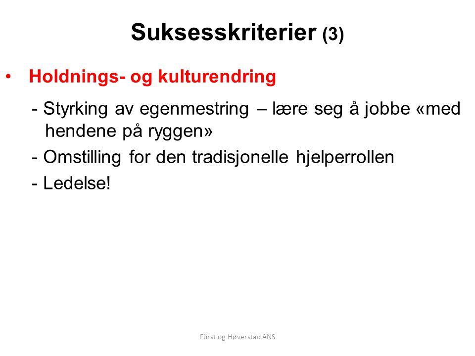 Suksesskriterier (3) Holdnings- og kulturendring