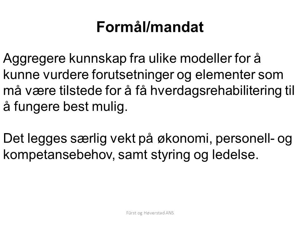 Formål/mandat